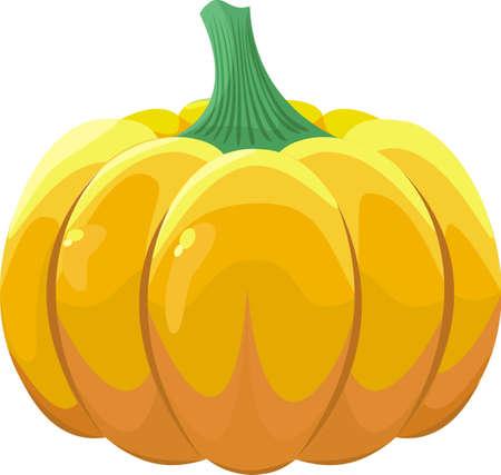 Pumpkin on white background Stock Vector - 19162760