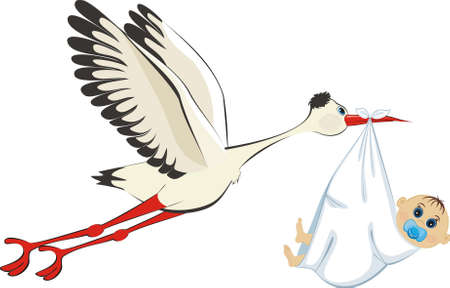 maternal: Stork delivering a newborn baby boy