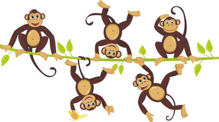 Cheerful monkeys frolic on a vine Ilustrace