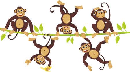 Cheerful monkeys frolic on a vine Illustration
