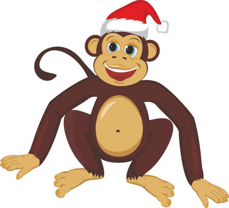 Monkey in the Christmas cap