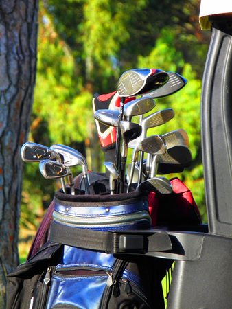Golf Clubs in bag photo