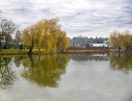 Tranquil landscape at a lake, with the cloudy sky, and the trees reflected symmetrically in the water
