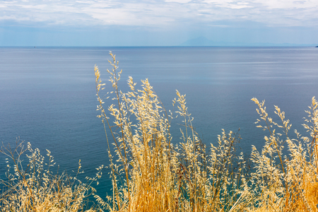 Dry grass on blue sea and cloudy sky background. View from the hill Imagens