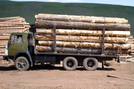 A truck loaded with logs Stock Photo - 14084064