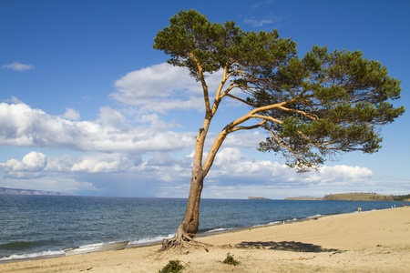 The sandy beach on the coast of Lake Baikal on Olkhon Island photo