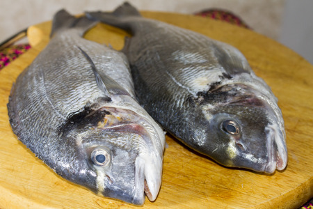 giblets: Two gutted fish dorado