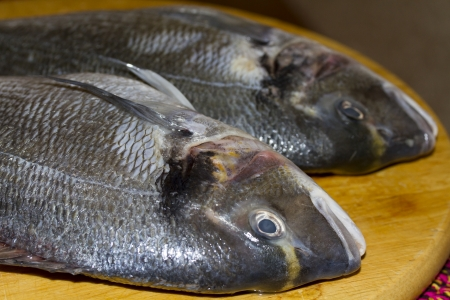 gutted: Two gutted fish dorado