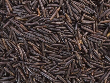 Antecedentes de arroz salvaje negro