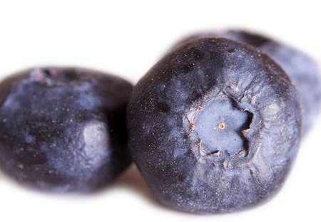 homogeneous: Blueberries on a homogeneous