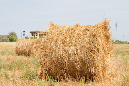 haystack: Haystack on sloping field Stock Photo