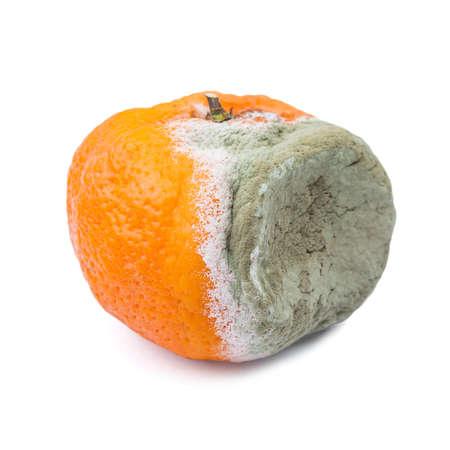 Mandarijn beschimmeld organische vruchten ongezonde eten Stockfoto