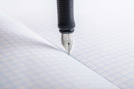 legal pad: Fountain pen on notebook in a cage Stock Photo