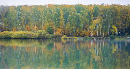 turbid: The shore of the lake on a calm misty autumn day. The view from the water. Yellowing forest on the banks