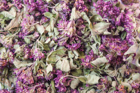 odorous: Dry herb Origanum vulgare background Stock Photo