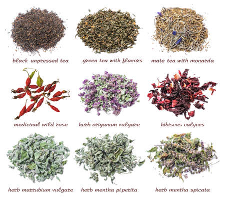 odorous: Set of dry tea leaves and herbs isolated on white background. Black and green tea, mate tea, wild rose, origanum vulgare, hibiscus calyces, marrubium vulgare, mentha piperita and mentha spicata