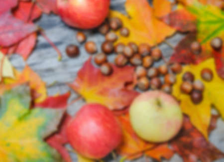 Autumn colored maple leaves, apples, and hazelnuts scattered on the old wooden board