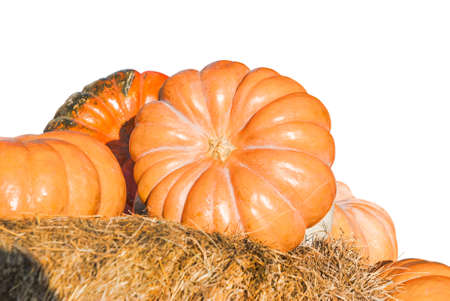 Pumpkin on hay isolated on white background