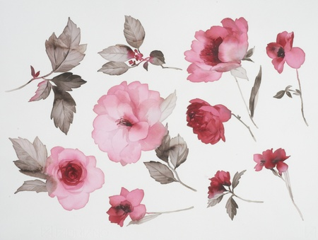 watercolor flower: Color illustration of flowers in watercolor paintings