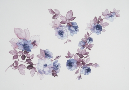 painted: Color illustration of flowers in watercolor paintings