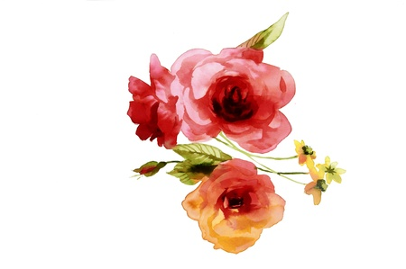 fabric painting: Color illustration of flowers in watercolor paintings