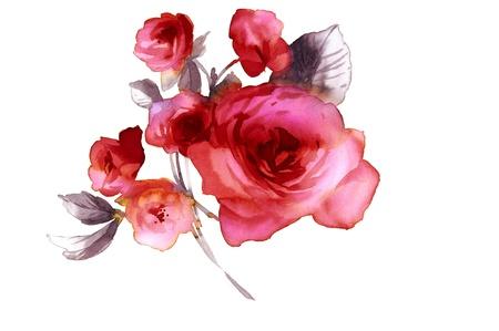 Color de la ilustración de flores en acuarelas Foto de archivo