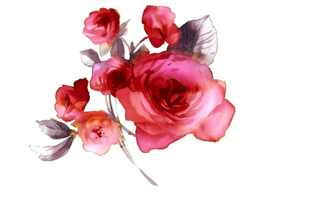 Color illustration of flowers in watercolor paintings