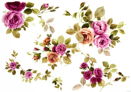 rose bouquet: Color illustration of flowers in watercolor paintings