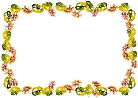 rose frame: flowers frame in white background isolated