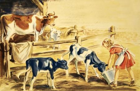 cow farm: cow illustration