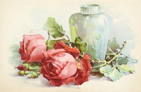 old botanic illustration Stock Photo