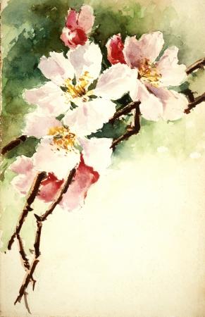 painterly: flowers illustration