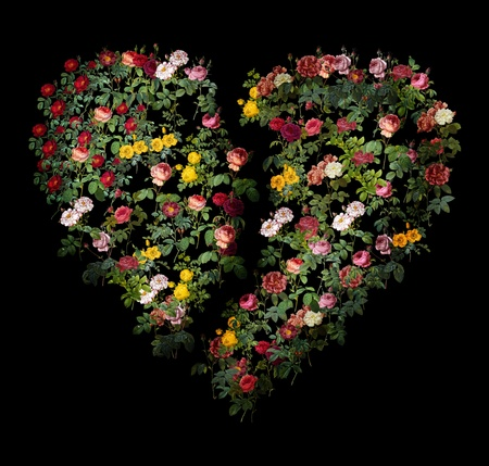 heart collage with flovers images photo