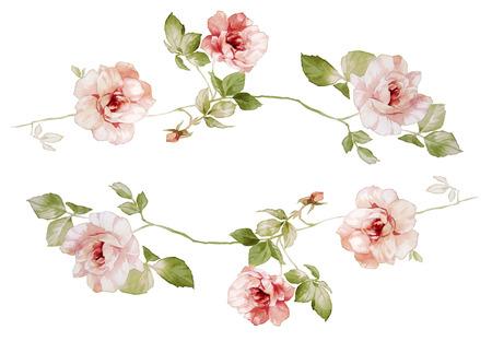 florale: Handzeichnung