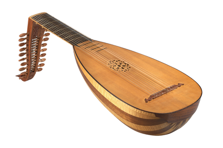 lute on white background