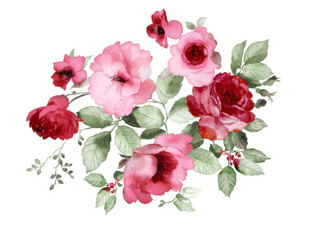 flower designs: Color illustration of flowers in watercolor paintings