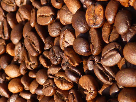 robusta: roasted coffee beans