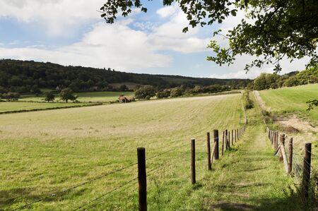 Green fields in British countryside Фото со стока