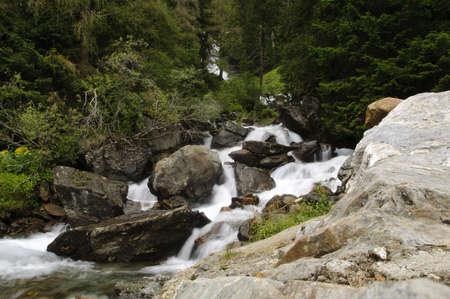 Les eaux froides d'un ruisseau de la for�t en cours d'ex�cution sur les rochers moussus dans les montagnes italiennes