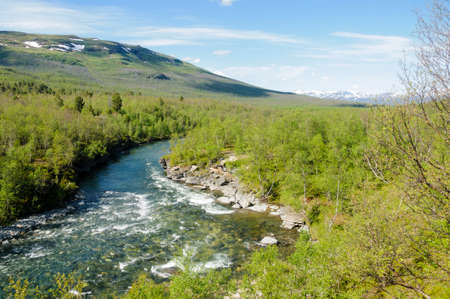 River flows through the wood in Abisko National Park, Swedish Lapland, Sweden, Europe