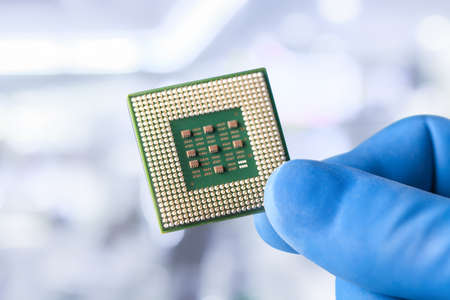 The hands in blue glove of the scientist hold the processor