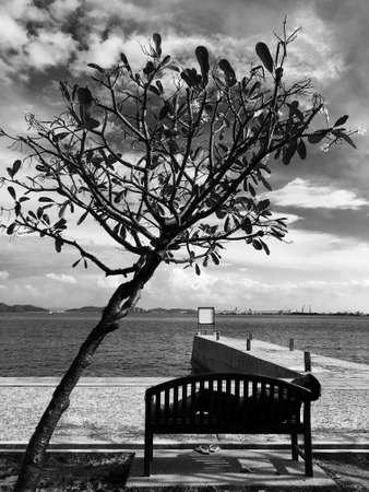 man: Lonely man sleep under the tree near port