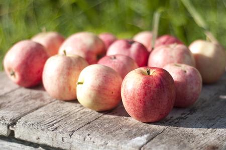 Reife Äpfel auf Holztisch über grüne Bokeh Hintergrund. Standard-Bild - 70721611