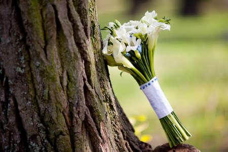 calas blancas: Ramo de boda blanco con las calas y fresia
