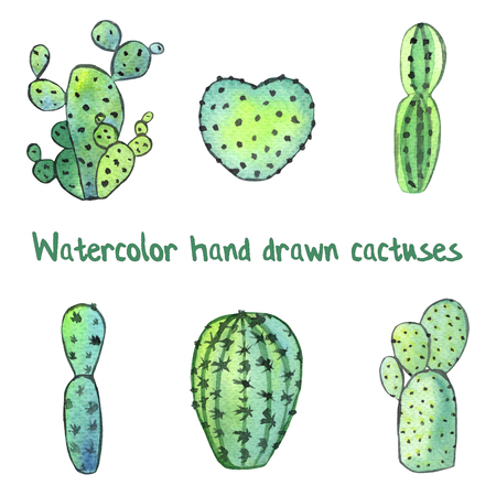 Watercolor succulent set with green cactuses isolated on white