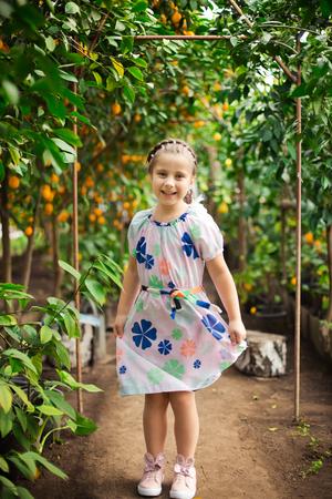Beautiful little happy girl in colorful dress in lemon garden Lemonarium picking fresh ripe lemons in her basket 免版税图像