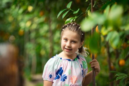 Beautiful little happy girl in lemon garden Lemonarium picking fresh ripe lemons in the wiker basket. Close up portrait. Horizontal portrait colorful image. Ideal for sites, advertising, web, banners etc 免版税图像