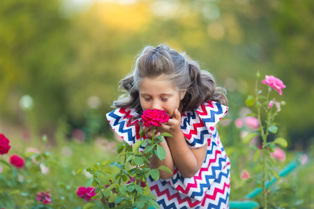 A small smiling girl with curly brown hair dressed in blue red pink dress with zigzag print smelling a rose in the rose spring summer garden