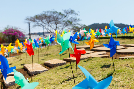 DALAT FRESH FARM - picturesque flower garden and place for visiting in Da Lat