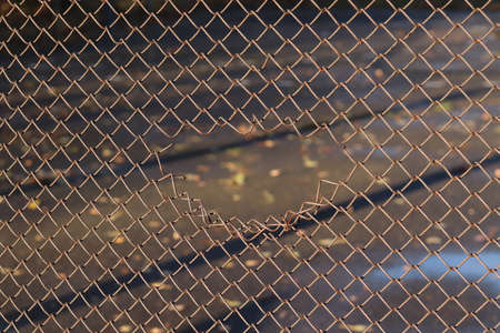 Hole in a metal fence made of wire mesh. Background for text. Copy space - the concept of freedom, limitations